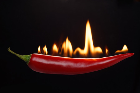 Red hot chili pepper. photo