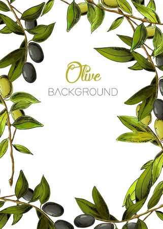 Vector background with black and green olives.