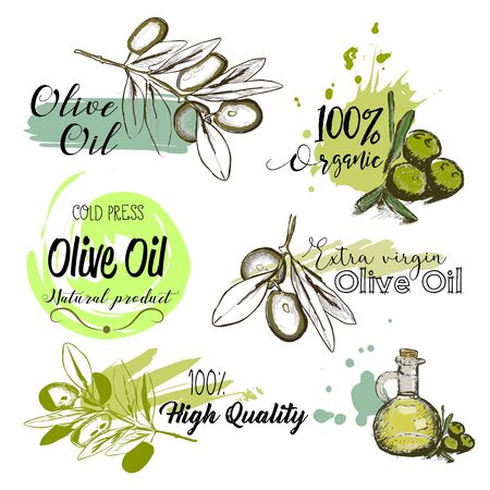 Set of hand drawn labels and signs of olive oil. Vector illustrations for olive oil labels, packaging design.  イラスト・ベクター素材
