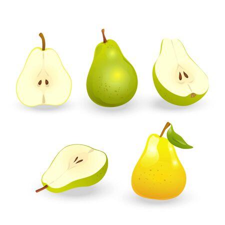 Set of realistic pears.  イラスト・ベクター素材