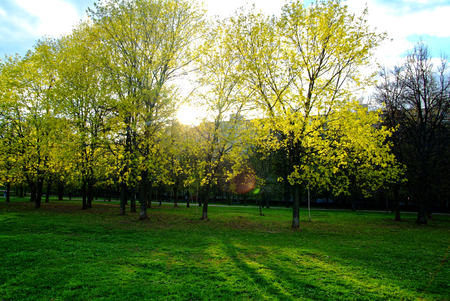 a Sunny day in a Moscow Park in spring, district Teply Stan Stock Photo