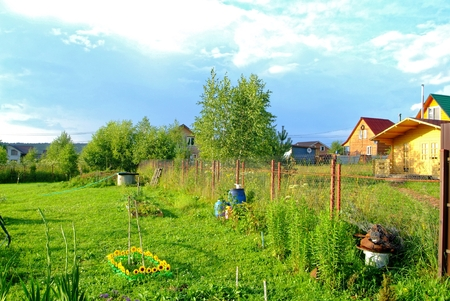 rural courtyard in the evening in summer, Russia