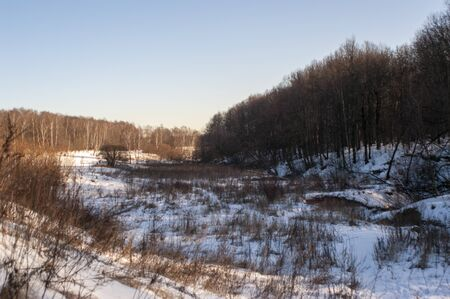 a lot of snow in the forest on a clear day, Moscow