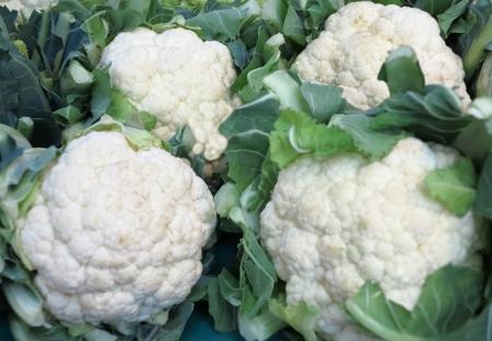 Cauliflower Archivio Fotografico