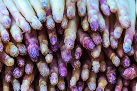 Fresh purple asparagus tips