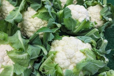cauliflower: Cauliflower Stock Photo