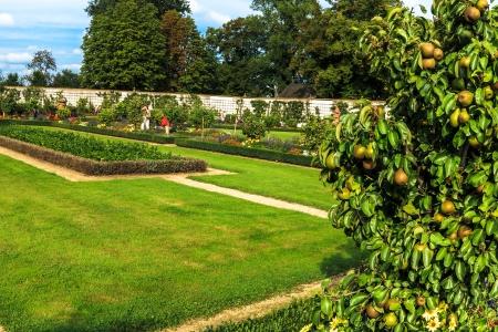 Monastery garden in Seligenstadt, Germany