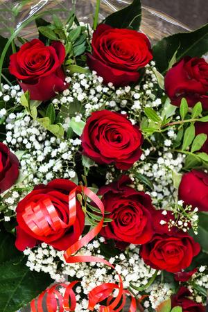 roses rouges: Bouquet de roses rouges sombres avec gypsophile blanc