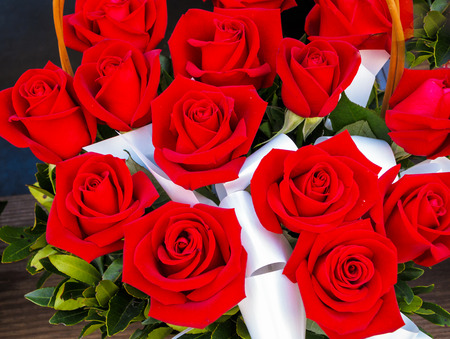 rosas rojas: Rosas rojas brillantes en la canasta