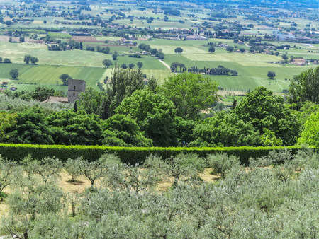 valley below: View into the valley below Assisi, Italy Editorial