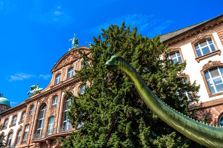 fossils: FRANKFURT, GERMANY-JUNE 14, 2015: The Natural History Museum Senckenberg Museum Boasts the extensive collection of Largest Dinosaur fossils in Europe, Germany