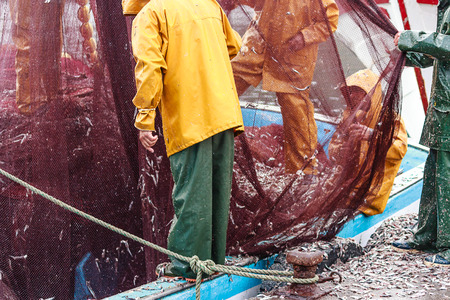 returning: After returning from the sea fishermen emptying nets
