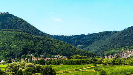 des vins: Obernai Alsace-green landscape with vineyards front Odilienberg, France