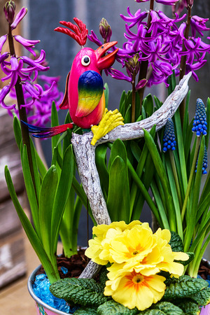 Small potted spring flowers with wooden parrot bird stock photo small potted spring flowers with wooden parrot bird stock photo 54869076 mightylinksfo
