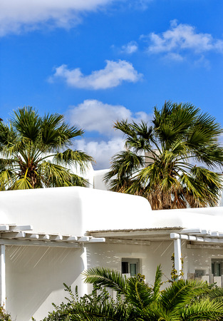 whitewashed: A whitewashed house between the palm trees