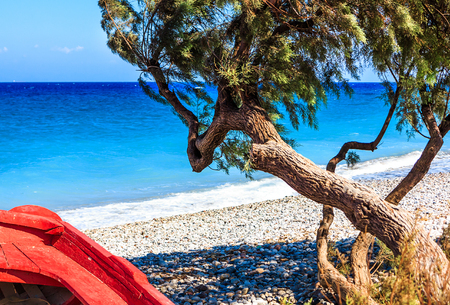 Greek colors - Divi divi tree and a red boat on a beach on Rhodes Iceland Stock Photo