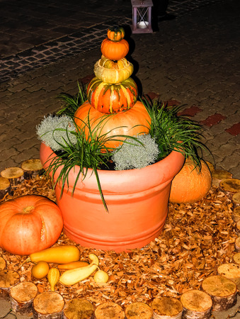 brightly lit: Brightly lit pumpkin pyramid in flowerpot