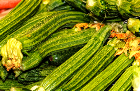 Zucchini Romanenca (Italian costata squash) therefore known as Roman Ribbed Stock Photo