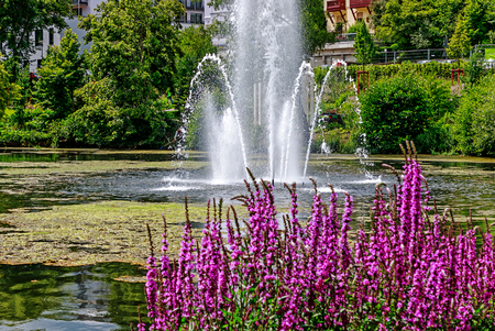 Picturesque pond with fountain in the spa park Bad Schwalbach in Hesse, Germany