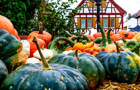 Beautiful fall display - Freshly harvested colorful pumpkins at a german weekly market.