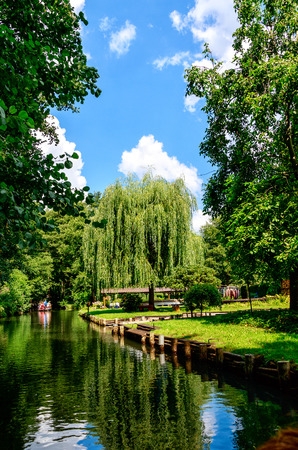 Spreewald near Berlin, Germany - Nature Reserve and Biosphere Reserve - Magnificent meadows and moorland and fairytale idyll, it really gets on a leisurely boat trip through the tiny canals.