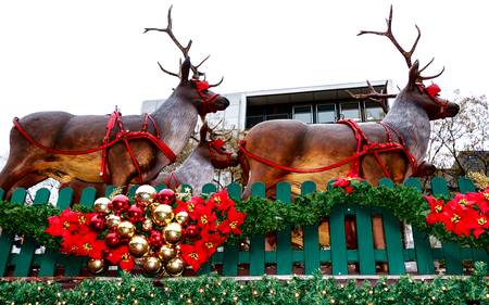 Christmas Market (The Nicholas Village) on the Rudolfplatz square with huge reindeer sculpture in front of the Hahnentor, in the city center of Cologne, Germany 写真素材