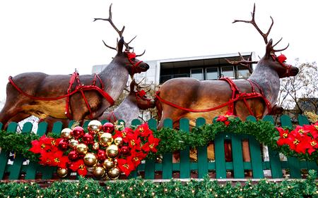 Christmas Market (The