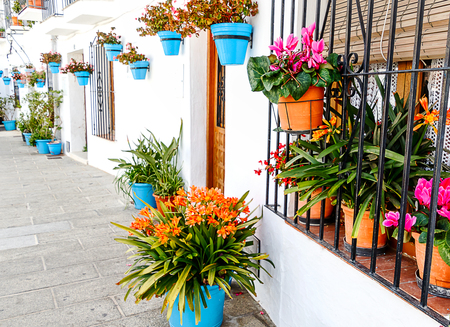 A narrow alley in Mijas white village decorated with many flowerpots. Andalusia, Costa del Sol, Spain