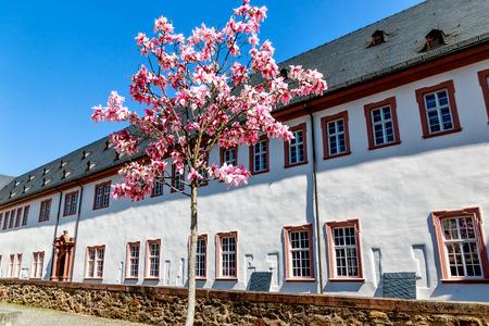 Eberbach Monastery, near Eltville am Rhein - Mystic heritage of the Cistercian monks in Rheingau, Hesse, Germany