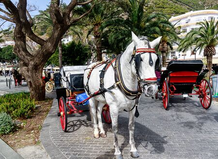 Horse-drawn carriages in the main square of Mijas pueblo, one of the most visited of Andalucia? S white villages, Costa del Sol. Stok Fotoğraf