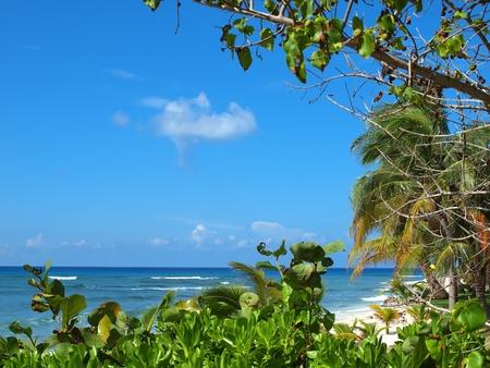 cayman: South Sound Grand Cayman, Cayman Islands Stock Photo