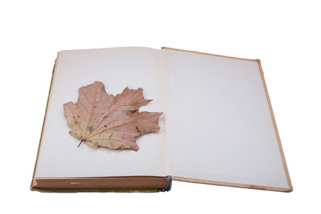 resurrect: open old book with dried maple leaf Stock Photo