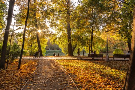 indian summer: Indian summer in autumn park - the last smile of fall