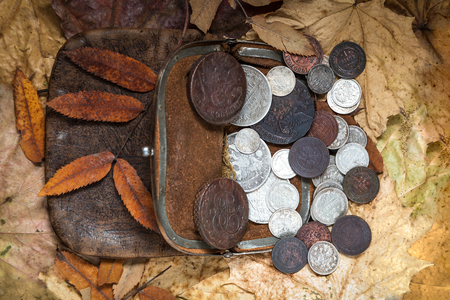 kopek: contents of an ancient leather purse with copper and silver coins of 18-20 centuries against autumn leaves