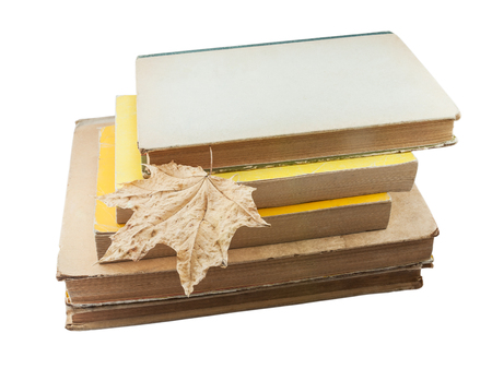dried leaf: old paper books unfortunately are less necessary and something are similar to this dried leaf