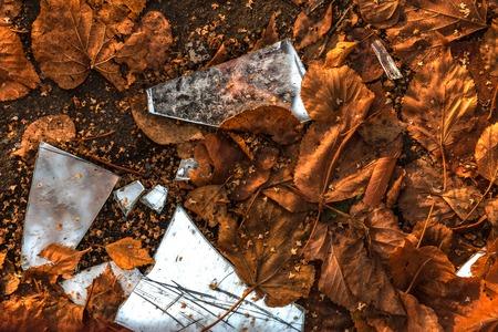 splinters of the broken mirror against the fallen-down autumn leaves