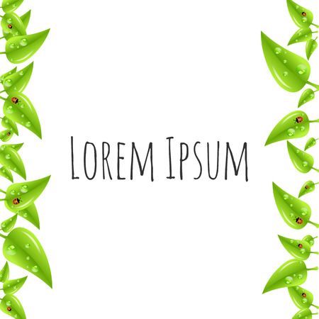 leaves frame: Green leaves frame isolated on white background. Vector illustration.