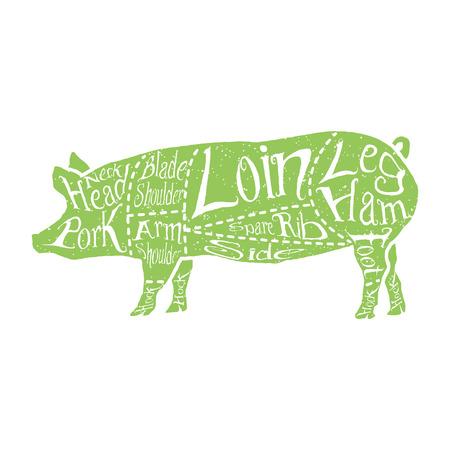American cuts of pork, vintage typographic hand-drawn butcher cuts scheme. Vector illustration.