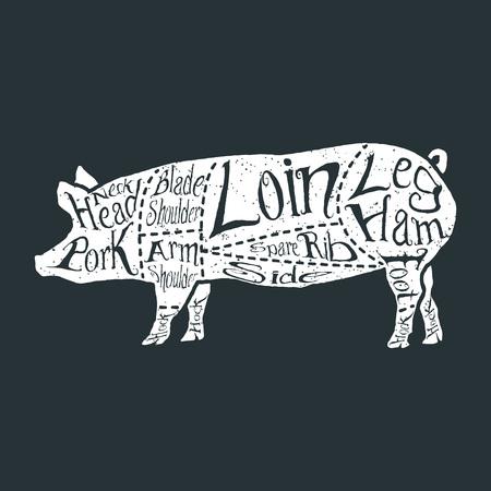 pork rib: American cuts of pork, vintage typographic hand-drawn butcher cuts scheme. Vector illustration.