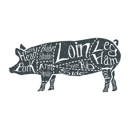 cortes americanos de carne de cerdo, cortes esquema de carnicero dibujado a mano tipográfica vendimia. Ilustración del vector.