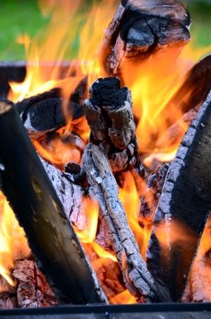 brazier: Fire - burning wood in a brazier.