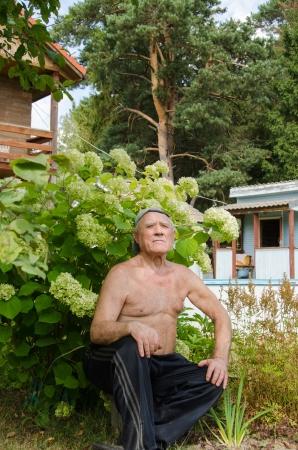 The elderly man has a rest in a garden under a hydrangea bush photo