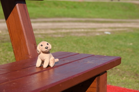 The forgotten toy on a bench of children photo
