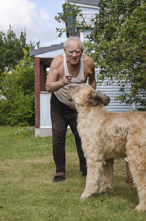 large dog: An elderly man on a lawn near the house threatening a large dog