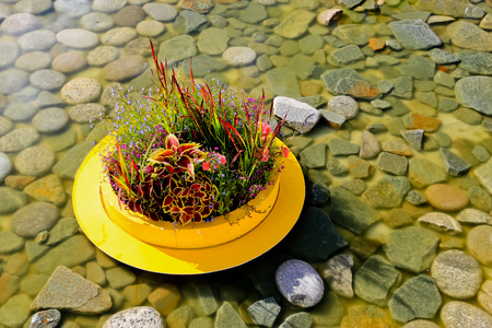 Vase with flowers is standing in a pond on a pebble