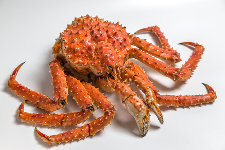a king crab lies on a white background 스톡 콘텐츠