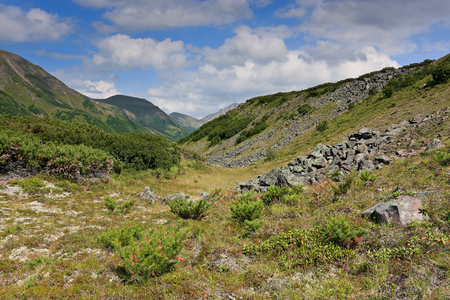 The   mountains of the central Kamchatka in Russia in the summer