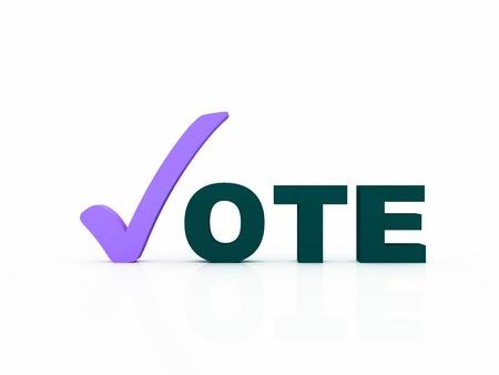 vote with check mark Stock Photo - 13794675