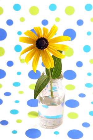 Yellow coneflower in vase with background of blue and green dots. photo