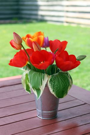 orange and red tulip bouquet in metal vase on picnic table